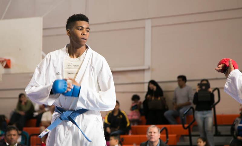 Houston Karate Open 2017 Tournament