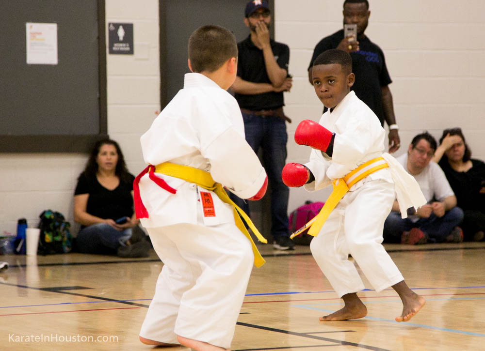 Traditional Karate Tournament 2017